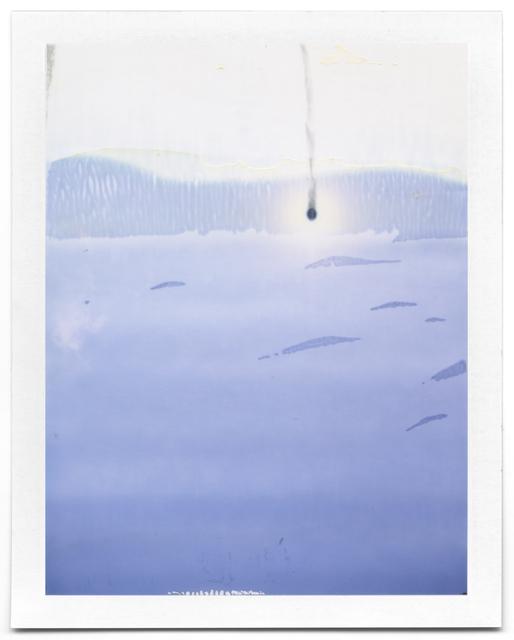 , 'Untitled (Landscape #31),' 2008-2014, Flowers