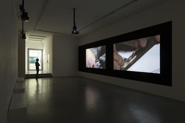 , 'Care,' 2015, Francesca Minini