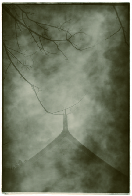 , 'Withered Temple,' 2011, see+ Gallery