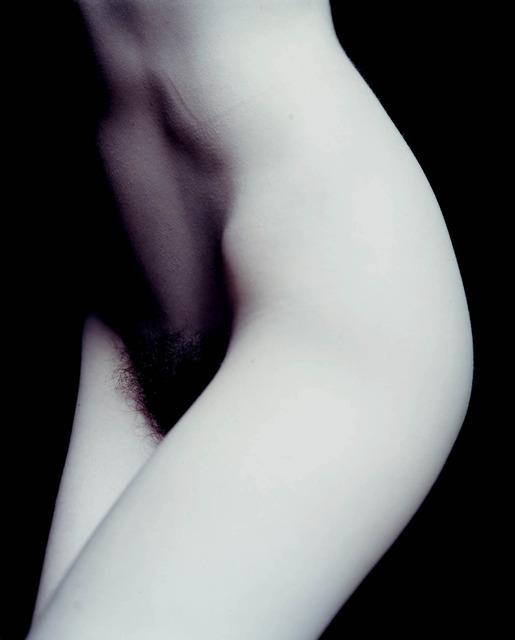 Carla van de Puttelaar, 'Untitled', 1998, Danziger Gallery