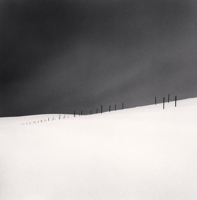 , 'Asparagus Sticks, Study 2, Hokkaido, Japan,' 2007, photo-eye Gallery