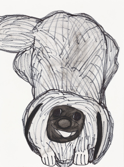 Kevin Chu, 'Pekingese', 2012, Drawing, Collage or other Work on Paper, Marker and watercolor on paper, Creativity Explored