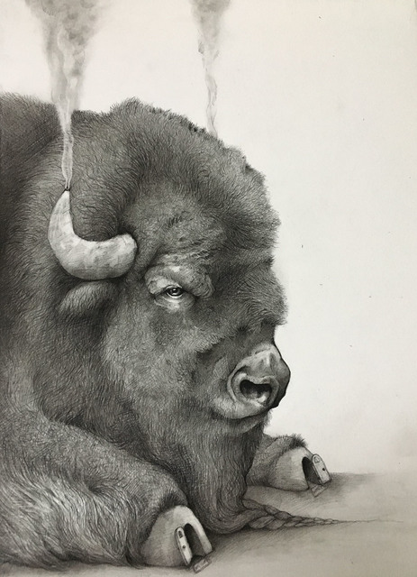 , 'Smoking Bison ,' 2017, Visions West Contemporary