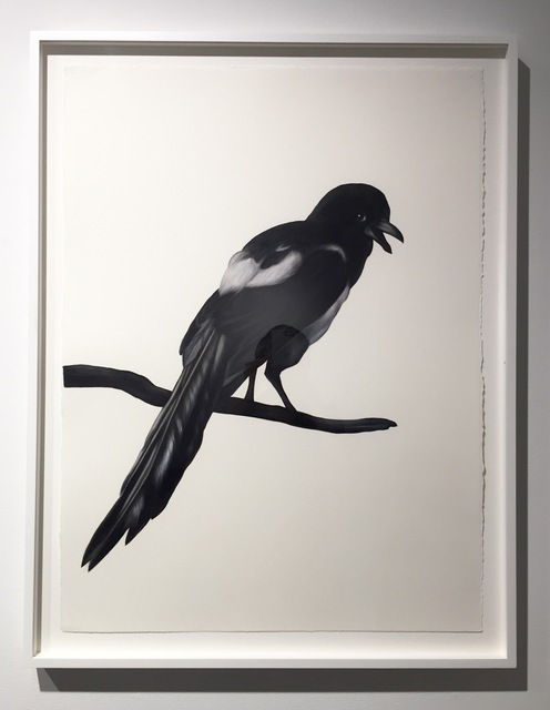 , 'Magpie (after Hondecoeter),' 2016, Sears-Peyton Gallery
