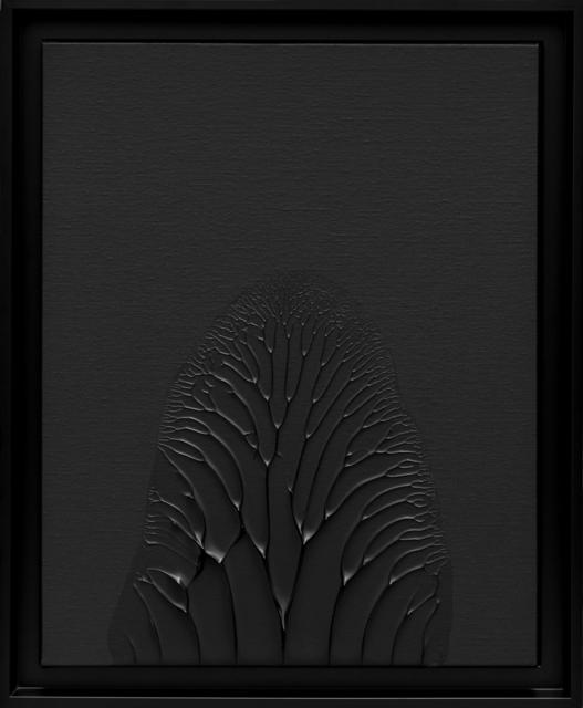 Thomas Tronel-Gauthier, 'Peinture Noire 9F #1', 2014, 22,48m2