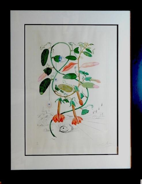 Salvador Dalí, 'Flora Dalinae Pisum Sensuale', 1968, Fine Art Acquisitions