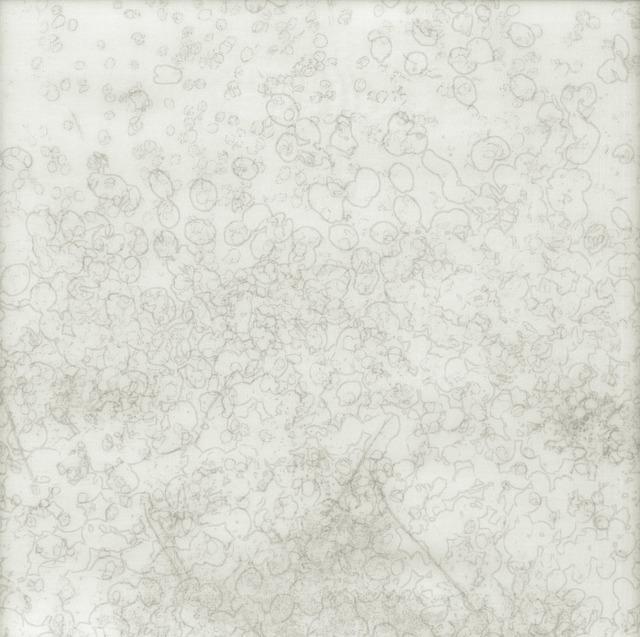 Chaco Terada, 'White Sigh IV', 2014, photo-eye Gallery