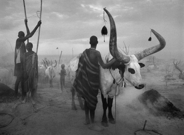 , 'DINKA CATTLE CAMP OF KEI, SOUTHERN SUDAN,' 2006, Huxley-Parlour