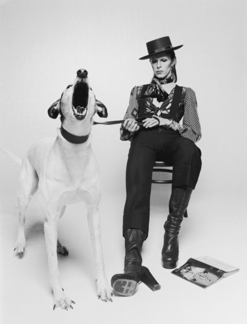 , 'David Bowie Diamond Dogs view 2 ,' ca. 1974, Ransom Art