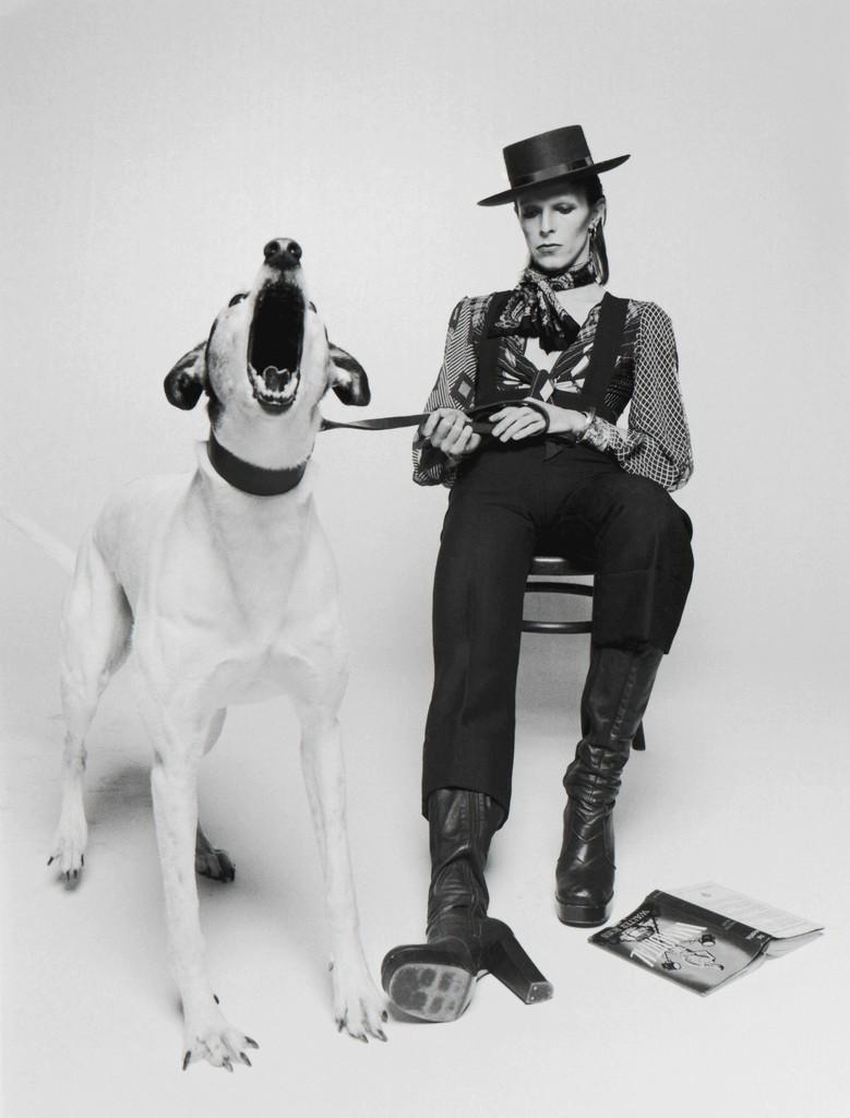 Dog Days David Bowie