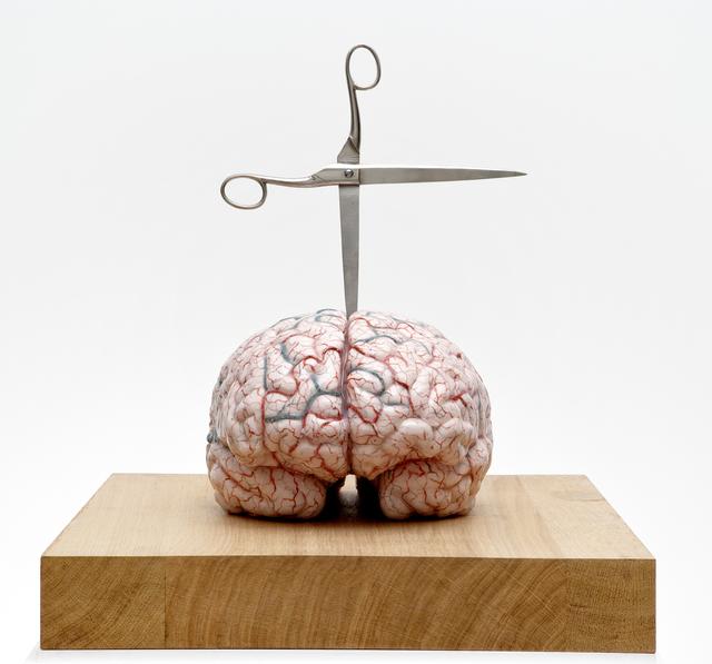 Jan Fabre, 'Brain with Star', 2012, Studio Trisorio