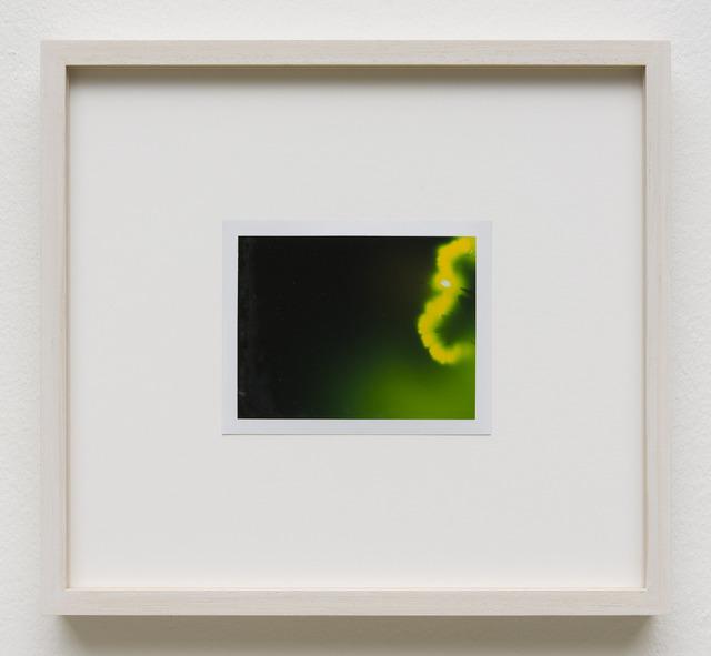 , 'Photuris #4,' 2013, Galerie Crone