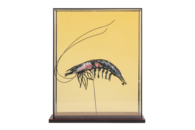 Harriet Horton, 'Taxidermy Prawn', 2018, Chiswick Auctions
