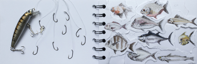 , 'Sketchbook Series (Fish ),' 2017, Beatriz Esguerra Art