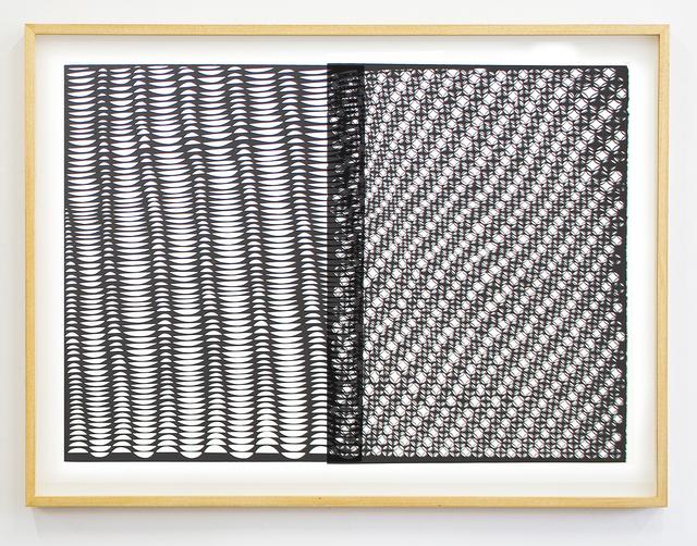 , 'Permutation 2 (Diciduous),' 2016, CES Gallery