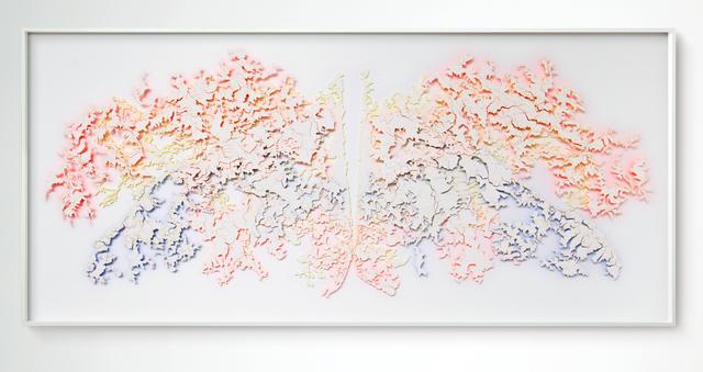 ", '""Hide"" (layered) 2,' 2017, Scott White Contemporary Art"