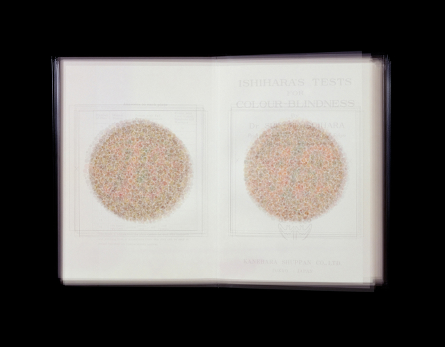 Doug Keyes, 'Ishihara's Tests for Colour-Blindness ', 2001, KLOMPCHING GALLERY
