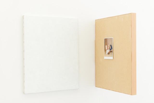 , 'Mimicry,' 2013, Andréhn-Schiptjenko