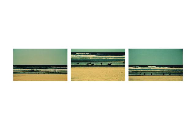 , 'Olhai,' 2001-2011, Galeria Ybakatu