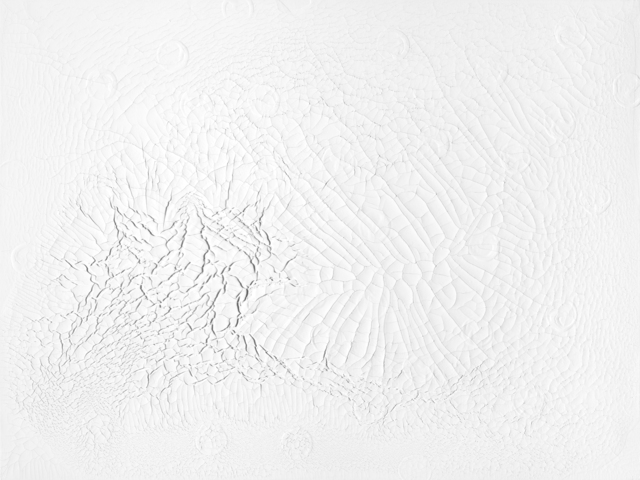 , 'White Noise,' 2017, Bruno David Gallery & Bruno David Projects