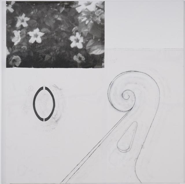 , 'Thing White Plants,' 2013, Galería Heinrich Ehrhardt