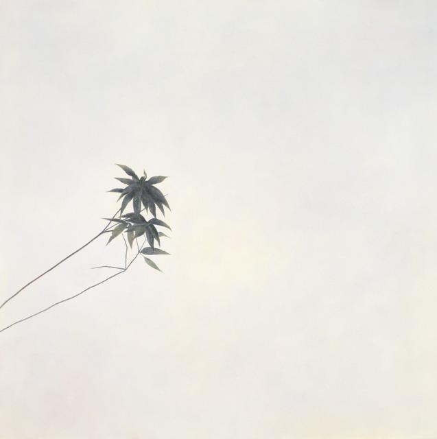, 'pilgrim 朝聖者,' 2016, Artrue Gallery