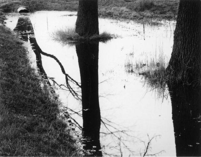 , 'Wisconsin,' 1962, Laurence Miller Gallery