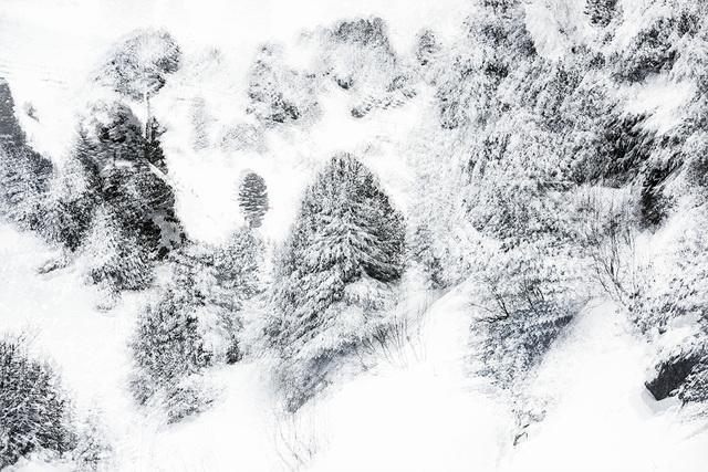 Eric Bourret, 'Walk- Landscape 10 - France', 2016, Sapar Contemporary