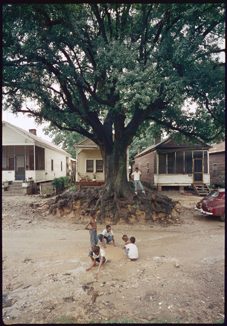 Gordon Parks, 'Children at Play, Shady Grove, Alabama', 1956, Adamson Gallery