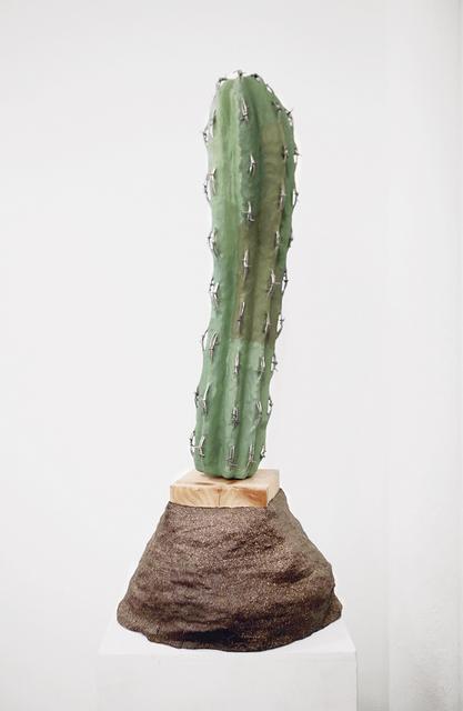 , 'Cacti of Arizona,' 2016, GRIN