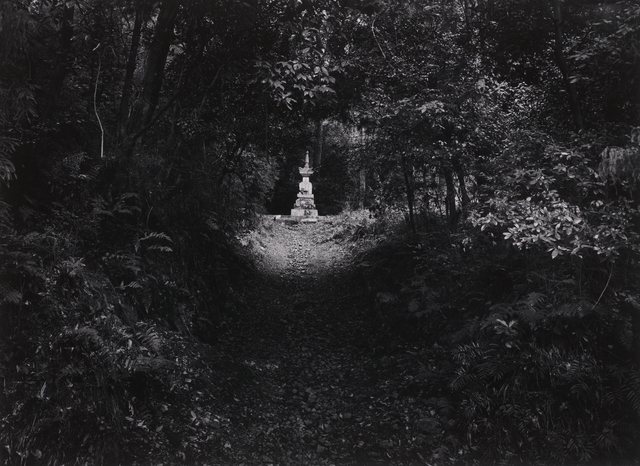 Paul Caponigro, 'Temple Grounds, Honen-In, Kyoto, Japan', 1976, Pucker Gallery