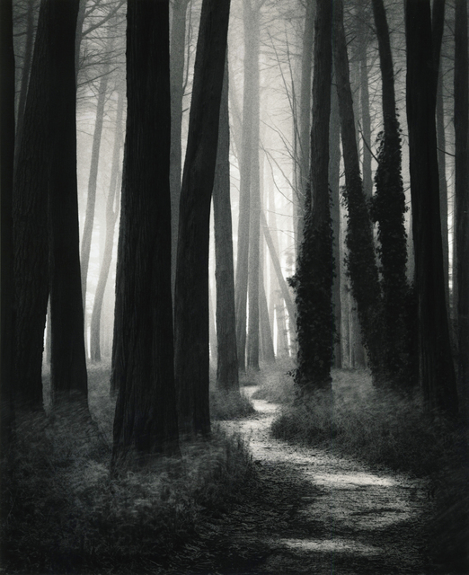 , 'Winding Path, San Francisco,' 2002, Photography West Gallery
