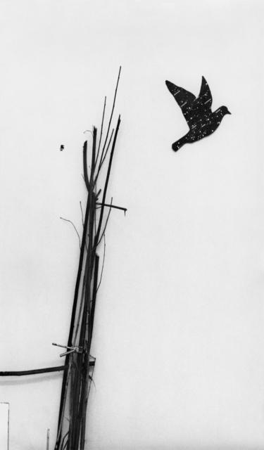 , 'Kosmos,' 1969, Marian Goodman Gallery