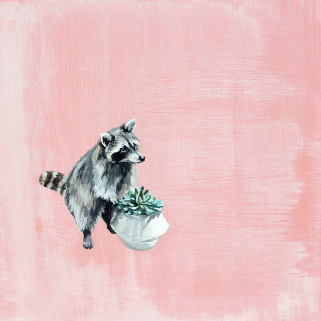 Holly Elander, 'Racoon 1', 2017, LAUNCH LA