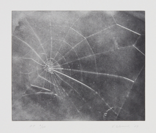 Vija Celmins, 'Untitled (Web #5),' 2009, Phillips: Evening and Day Editions (October 2016)