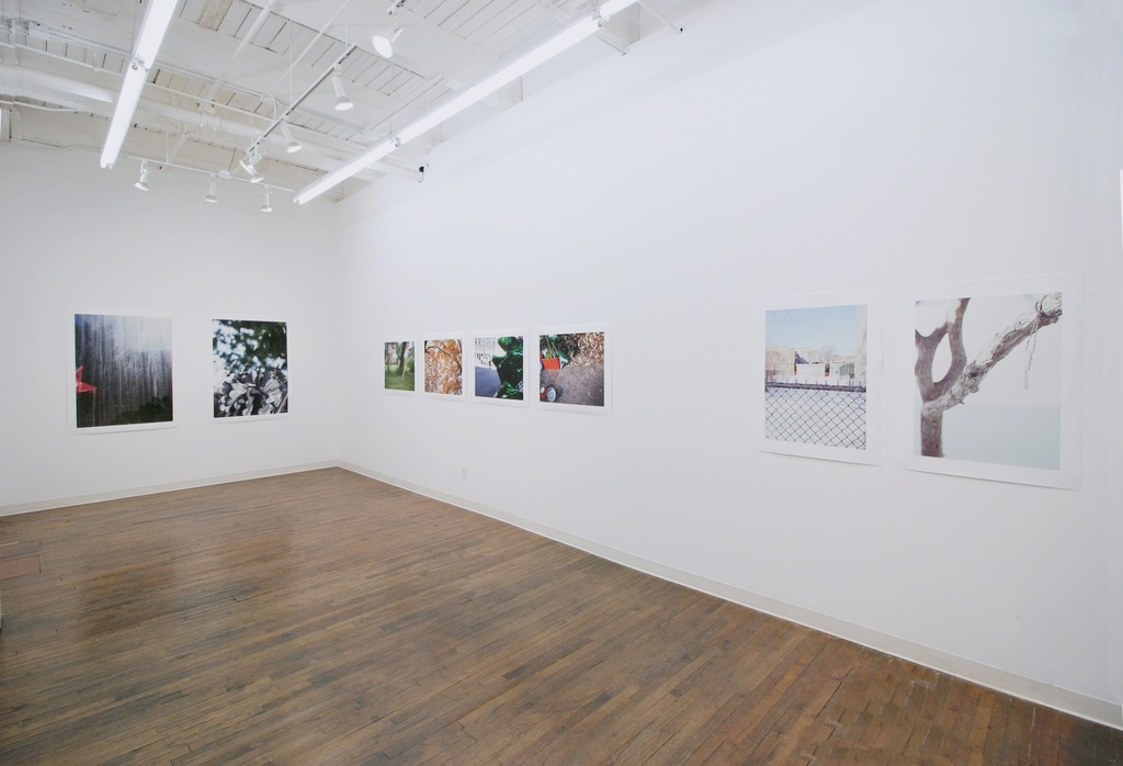 Gun Shadows, installation view