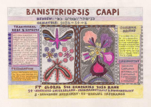 , 'HFT The Gardener/Outsider Artworks (Banisteriopsis caapi [Ayahuasca]),' 2014-2015, Annely Juda Fine Art