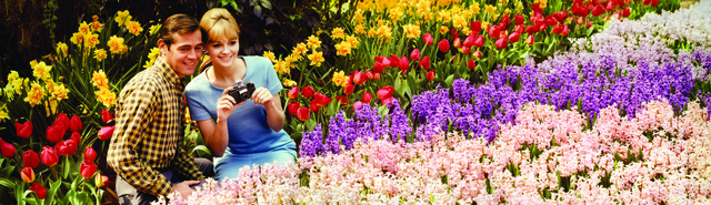 , 'Colorama 302, Couple in blossoms at Bronx Botanical Gardens,' Displayed 2/19/68–3/11/68, George Eastman Museum
