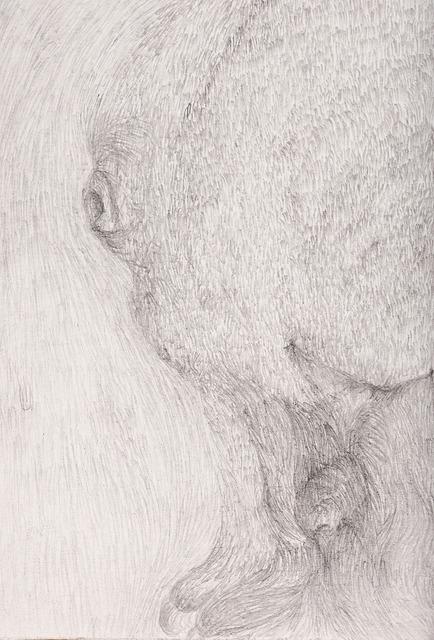 , 'Untitled 1,' 2013, EspIRA / Adrede