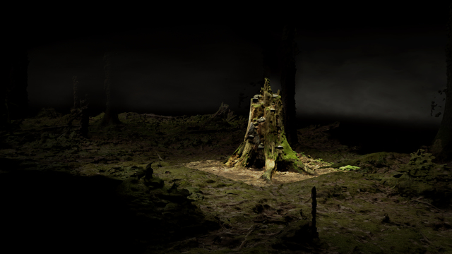 , 'Point Cloud, Old Growth,' 2018, Akinci