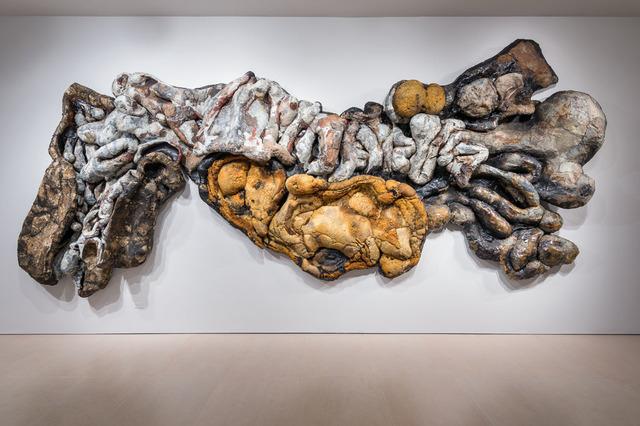 , 'Adenocalcinoma Poliresidual,' 2014, McClain Gallery