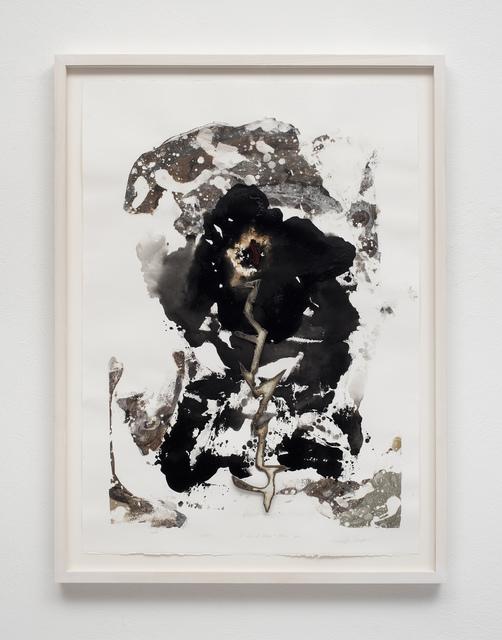 , 'Captiva - La Ira de Chango & Zeus,' 2016, Galleria Pack