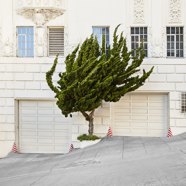 , 'Topiary I,' , Edition EKTAlux