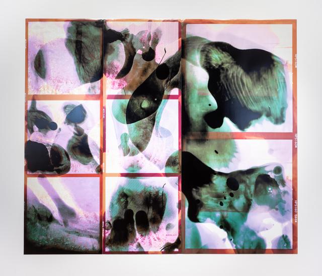 Corine Vermeulen, '209P / Linear (Belle Isle)', 2019, David Klein Gallery