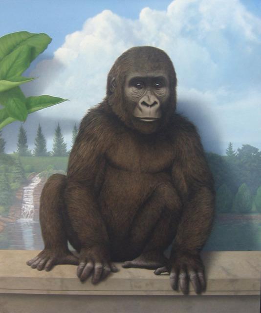 Tom Palmore, 'Gorilla in the Garden', J. Cacciola Gallery