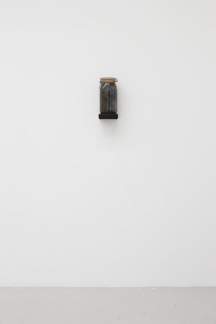 "Kate Ericson and Mel Ziegler, '""Vinegar of the 48 Weeds"" ', 1992, Perrotin"