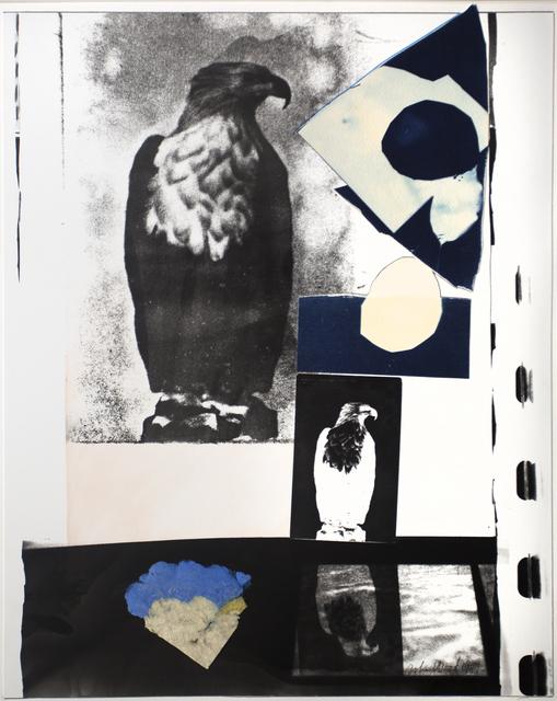 , 'Eagle Postcard,' 1987, Bruce Silverstein Gallery