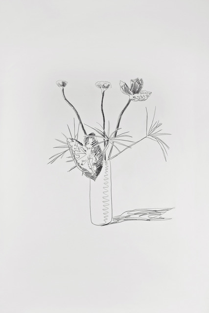 Andy Warhol, 'Flowers (Black and White)', 1974, David Tunick, Inc.