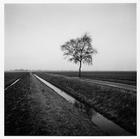 Paul Hart, 'Trevethoe Farm', 2013, The Photographers' Gallery | Print Sales