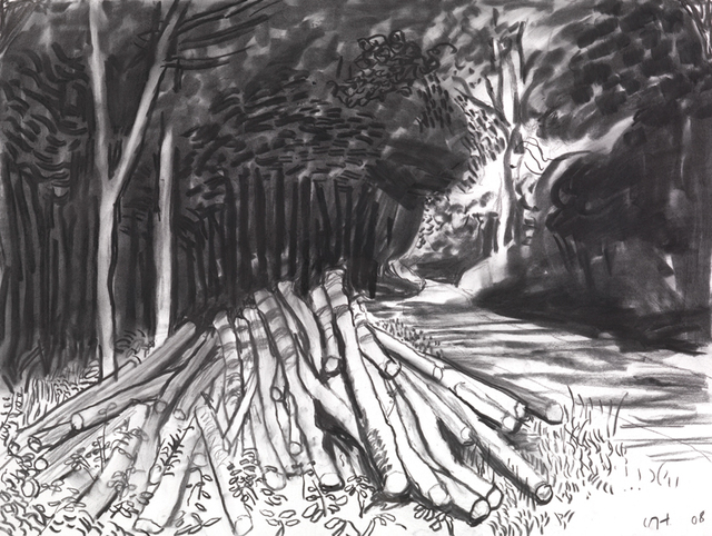 , 'Fresh Timber on Woldgate,' 2008, Paul Kasmin Gallery